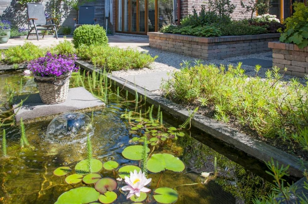 Symmetrische tuin met vijver for Een vijver